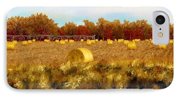 Autumn Hay IPhone Case by Ric Darrell