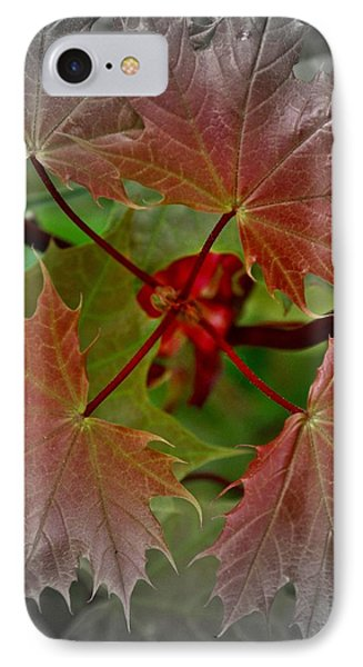 Autumn IPhone Case by Henry Kowalski