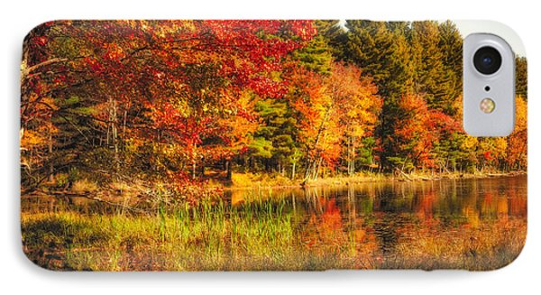 Autumn Hot Mess IPhone Case by Robert Clifford
