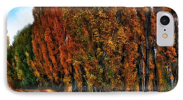 Autumn Impression IPhone Case by Thomas Born
