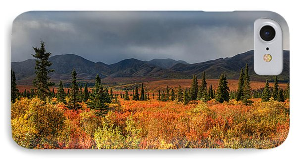 Autumn In Alaska IPhone Case by Darlene Bushue