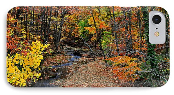 Autumn In Full Bloom Phone Case by Frozen in Time Fine Art Photography