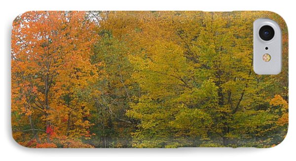 Autumn In Maine Phone Case by Patricia E Sundik