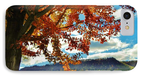 Autumn In Minnesota IPhone Case