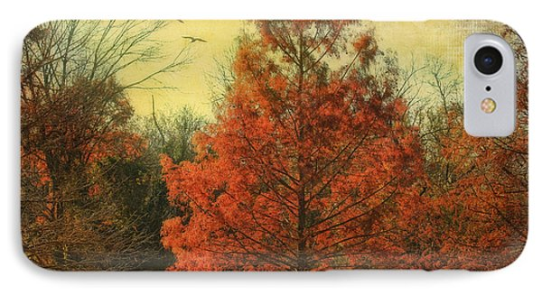 Autumn In Texas IPhone Case by Joan Bertucci