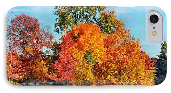 Autumn In The Air IPhone Case by Judy Palkimas