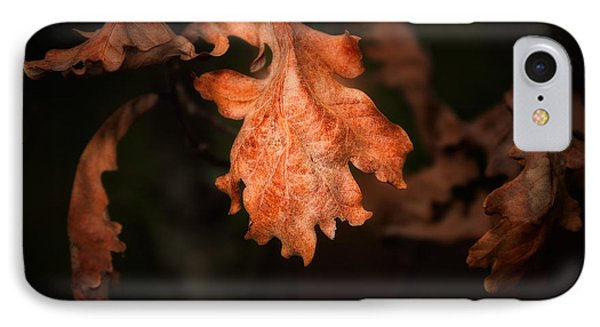 Autumn Is In The Air IPhone Case by Tom Mc Nemar