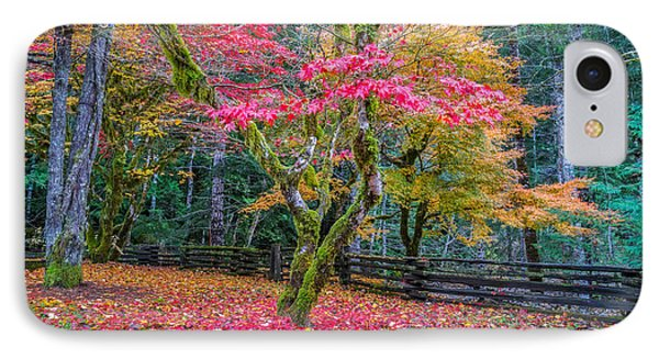 Autumn In The Cascade Forest IPhone Case by Ken Stanback