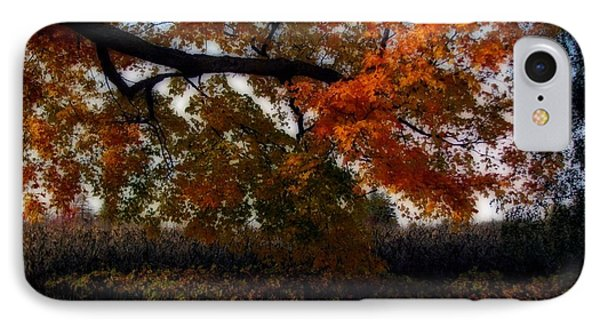 Autumn In The Country Phone Case by Inspired Nature Photography Fine Art Photography