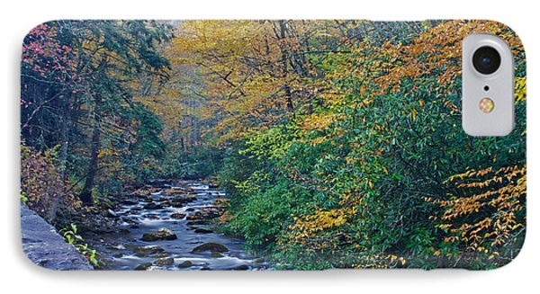 Autumn In The Great Smoky Mountains V IPhone Case
