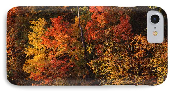 Autumn In The Ozarks IPhone Case