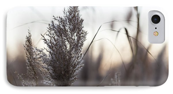 IPhone Case featuring the photograph Autumn In The Tall Grass by Andrew Pacheco