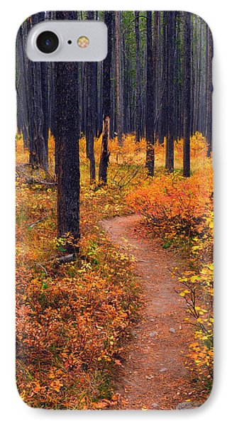 Autumn In Yellowstone IPhone Case