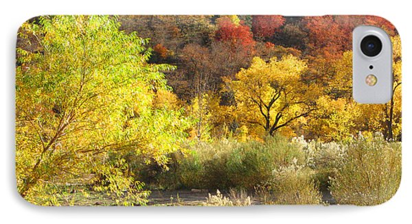 IPhone Case featuring the photograph Autumn In Zion by Alan Socolik
