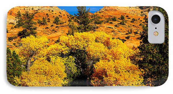 Autumn In Zion IPhone Case by Greg Norrell