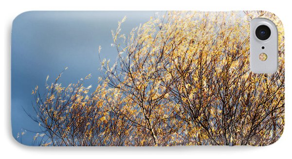 IPhone Case featuring the photograph Autumn Is Leaving by Gwyn Newcombe