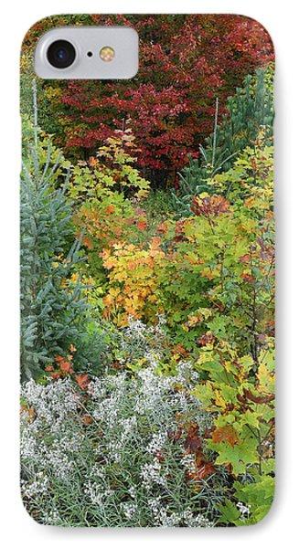 Autumn Killarney Provincial Park IPhone Case