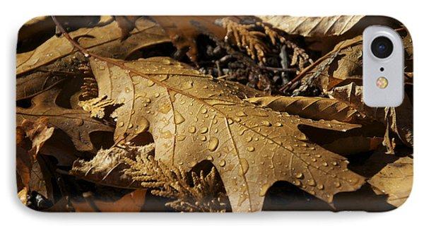 Autumn Leaf At Dawn IPhone Case