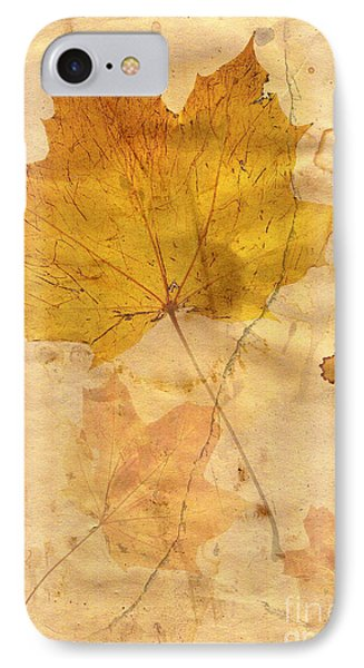 Autumn Leaf In Grunge Style IPhone Case