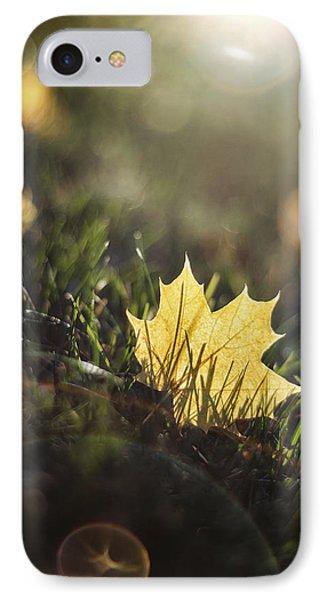 Autumn Leaf Sunset IPhone Case by Scott Norris