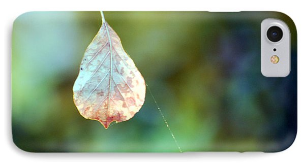 IPhone Case featuring the photograph Autumn Leaf Suspended by Linda Cox