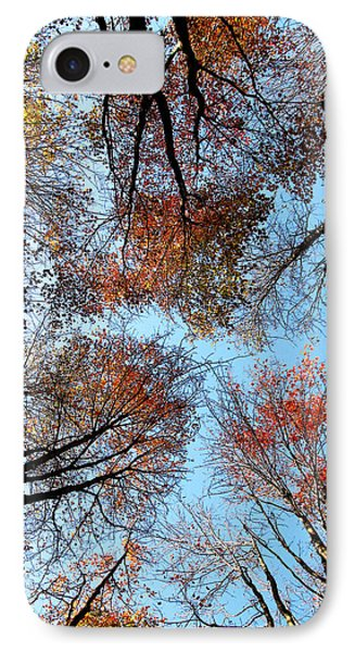 Autumn Leaves 2011 Season Phone Case by Tina M Wenger