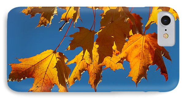 IPhone Case featuring the photograph Autumn Leaves by Dennis Bucklin