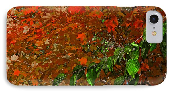Autumn Leaves In Red And Green IPhone Case by Andy Lawless