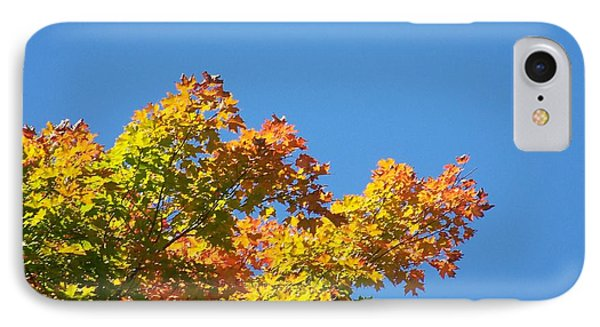 IPhone Case featuring the photograph Autumn Leaves by Jackie Mueller-Jones
