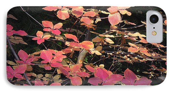 IPhone Case featuring the photograph Autumn Leaves by Kristen R Kennedy