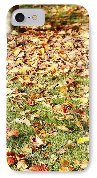 Autumn Leaves IPhone Case by Les Cunliffe