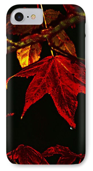 IPhone Case featuring the photograph Autumn Leaves by Lesa Fine