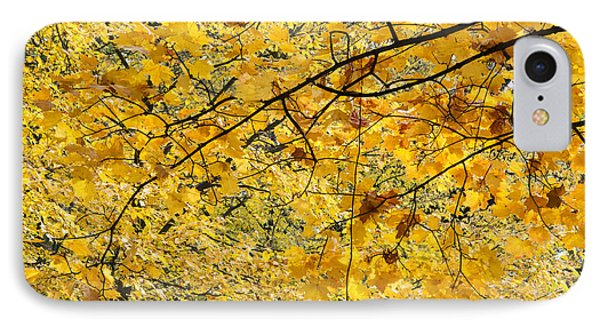 Autumn Leaves Phone Case by Michal Boubin