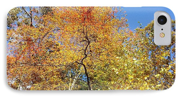 IPhone Case featuring the photograph Autumn Limbs by Jason Williamson