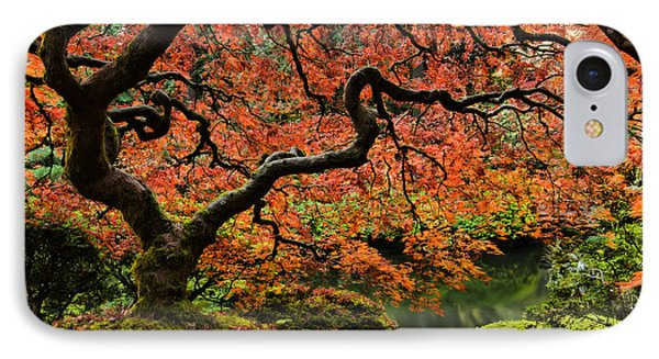 Autumn Magnificence IPhone Case by Don Schwartz