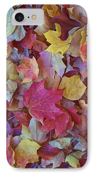 Autumn Maple Leaves - Phone Case IPhone Case by Gregory Scott