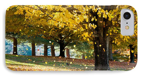 Autumn Maple Tree Fall Foliage - Wonderland IPhone Case by Dave Allen