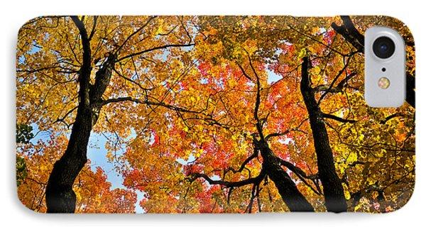 Autumn Maple Trees Phone Case by Elena Elisseeva