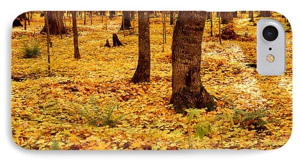 Autumn Maples Phone Case by Tim Hawkins
