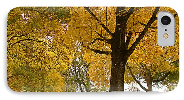 Autumn Memories Phone Case by Beverly Guilliams
