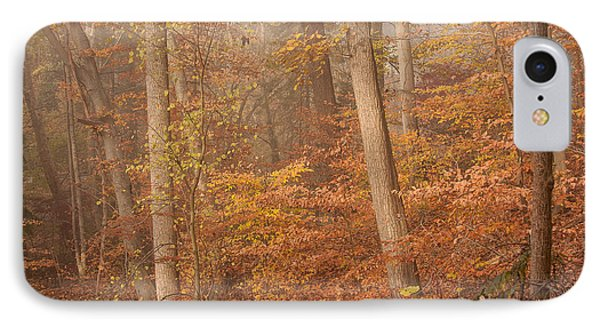Autumn Mist IPhone Case
