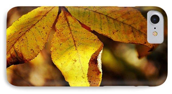 Autumn Moon Phone Case by JAMART Photography