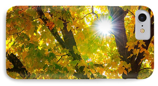 Autumn Morn IPhone Case