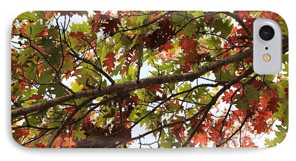 Autumn Oak Leaves IPhone Case by Carol Groenen