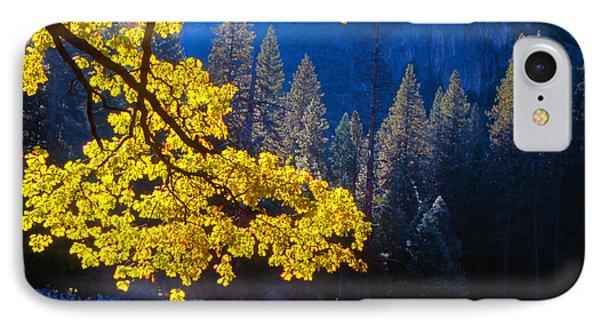 Autumn Oak Yosemite IPhone Case