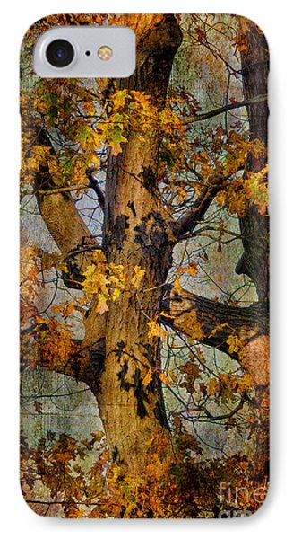 Autumn Oaks In Dance Mode IPhone Case by Lois Bryan