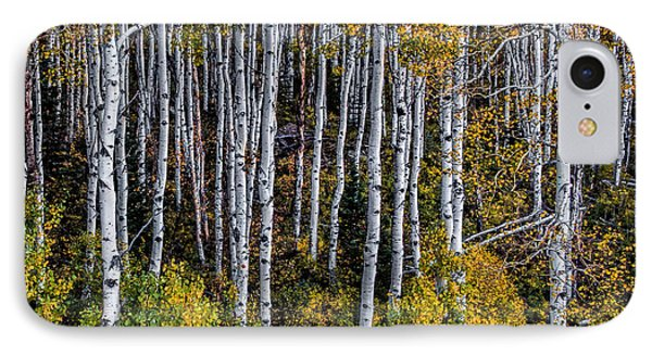 IPhone Case featuring the photograph Autumn On Mcclure Pass by Ken Smith