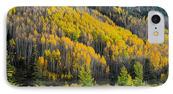 Autumn On The Links IPhone Case by John McArthur