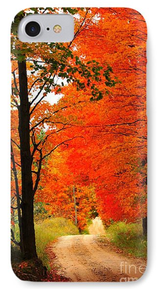 IPhone Case featuring the photograph Autumn Orange 2 by Terri Gostola