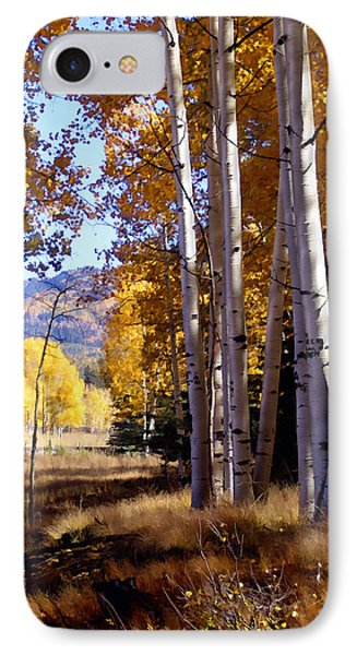 Autumn Paint Chama New Mexico Phone Case by Kurt Van Wagner
